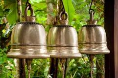 De zilveren klokken van de boom Royalty-vrije Stock Fotografie
