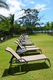 De zitkamer van het strand zit allen in een rij op gras voor Royalty-vrije Stock Foto's