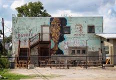 De Zitkamermuurschildering van het konijn, Austin Texas stock foto