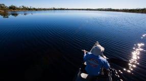 De Zitstokmeer van de buizerd - Okefenokee-Moeras Stock Foto