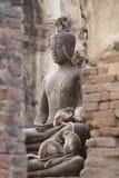 De zitting van de aapfamilie het spelen op het oude beschadigde standbeeld van Boedha, het Spontane dierlijke wild Royalty-vrije Stock Afbeeldingen