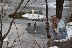 De zitting van Alenka van het sprookjekarakter door een bevroren meer stock afbeeldingen