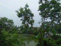De zitting van de aardregen stock afbeelding