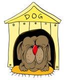 De zitting van de hond in de cabine Stock Afbeelding