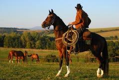 De zitting van de mens op zijn paard Stock Afbeeldingen