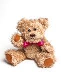 De zitting van de teddybeer. Geïsoleerd Stock Afbeeldingen