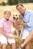 De Zitting van de vader en van de Zoon met binnen Hond op de Balen van het Stro Royalty-vrije Stock Foto's