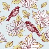 De zitting van de vogel op de bloemtak Stock Afbeelding