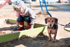De zitting van het jong geitjemeisje in zand op de speelplaats witn haar hond stock afbeeldingen