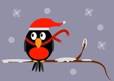 De zitting van de Kerstmisvogel op een tak met sneeuw in een sjaal en een hoed Stock Fotografie