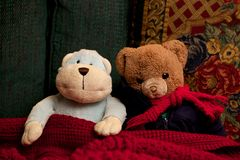 De Zitting van Toy Teddy Bear en van de Aap samen als Vriendenvriendschap Royalty-vrije Stock Foto's