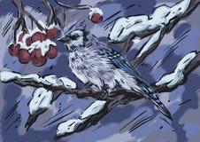 De zitting van de de wintervogel op een tak royalty-vrije illustratie