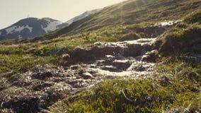 De zoet waterstroom loopt in de bergen, verschijnt de libel op de achtergrond Alpen, Furka-Pas stock footage