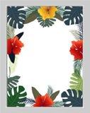 De zomer achtergrondkaart, uitnodiging, vectorillustratie Stock Fotografie