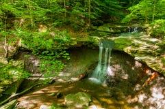 De zomer Blauw Hen Falls Stock Afbeelding