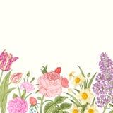 De zomer bloemen uitstekende vectorachtergrond Stock Foto's