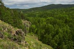 De zomer boslandschap met rots in bos Royalty-vrije Stock Fotografie