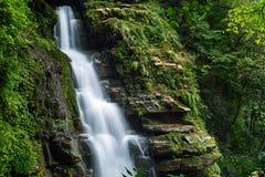 De zomer boswaterval Stock Afbeelding