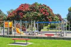 De zomer in Bowentown, Nieuw Zeeland Pohutukawaboom en de speelplaats van Kinderen stock afbeeldingen