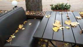 De zomer café in het de herfstpark De lijst en de bank wordt uitgestrooid die met Stock Foto