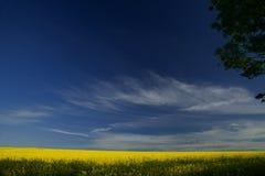 De zomer in Cambridgeshire Royalty-vrije Stock Fotografie