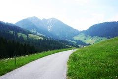 De zomer in de Alpen Stock Fotografie