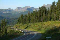 De zomer in de bergen Stock Foto
