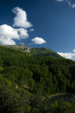 De zomer in de bergen Royalty-vrije Stock Foto's