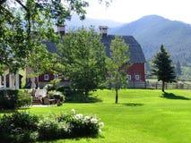 De zomer in de Bergen stock foto's
