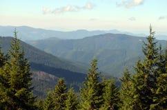 De zomer in de bergen Royalty-vrije Stock Afbeeldingen