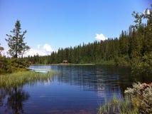 De zomer in de bergen stock fotografie