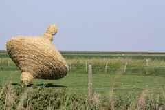 De zomer in de Nederlandse provincie van Zeeland in Holland Stock Foto