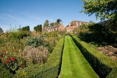 De zomer in de tuin Royalty-vrije Stock Afbeelding