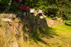 De zomer in de tuin Stock Foto's