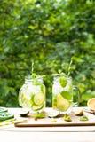 De zomer drinkt limonademojito Stock Afbeeldingen