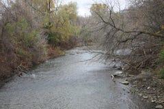 De zomer eindigen de bomen theyre bladeren hebben gelaten vallen maar de rivier verandert nooit royalty-vrije stock afbeelding