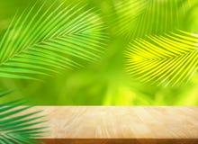 De zomer en aardproductvertoning met houten lijstteller op het bladachtergrond van de onduidelijk beeldkokosnoot verse groene tro royalty-vrije stock foto