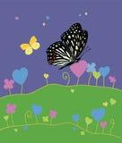 De zomer en vlinders Stock Afbeeldingen