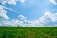 De zomer glanzende weide met blauwe hemel en pluizige wolken Royalty-vrije Stock Afbeeldingen