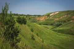 De zomer groene vallei met een stroom royalty-vrije stock foto