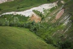 De zomer Groene vallei met stroom en bos stock afbeelding