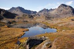 De zomer in Groenland Royalty-vrije Stock Afbeeldingen