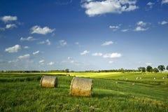 De zomer haybales Stock Fotografie