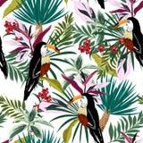 De zomer Heldere Tropische bos Kleurrijke Toekan, exotische vogels, RT royalty-vrije illustratie