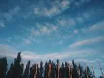 de zomer hemel Stock Afbeeldingen