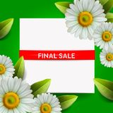 De zomer het Definitieve Verkoop bloeien van letters voorzien en het boeket realistische madeliefje, kamille op groene achtergron stock illustratie