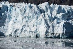 De zomer in het Nationale Park van de Gletsjerbaai royalty-vrije stock afbeeldingen