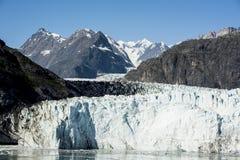 De zomer in het Nationale Park van de Gletsjerbaai stock afbeeldingen