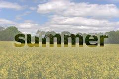 De zomer het van letters voorzien Stock Afbeeldingen
