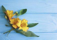 De zomer houten van achtergrond bloemenalstroemeria versheidspatroon Royalty-vrije Stock Afbeeldingen